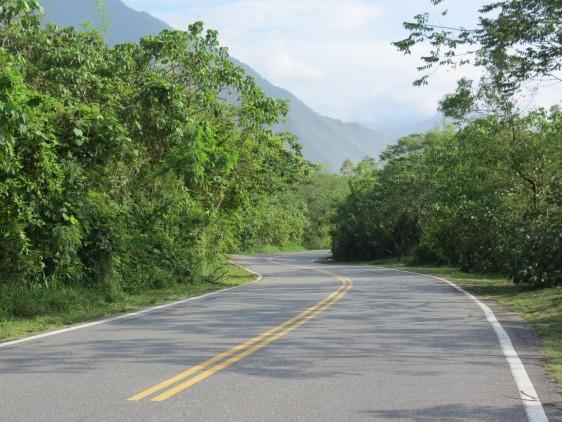 國語日報「社論」鄉間道路的美麗與哀愁